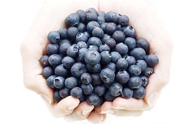 Multi nutrient-rich bilberry is valuable in maintaining skin health, cardiovascular fitness, cognitive strength, healthy and disease-free eyes, unobstructed blood flow and better functioning of the overall body. For many decades, the antimicrobial, antiox